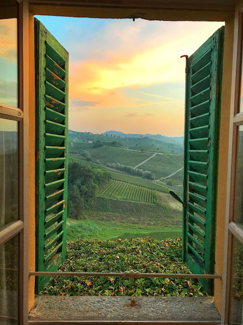 View from Tenuta Montanello B&B in Castiglione Falletto.