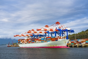 What issues are on the mind of port reform supporters?