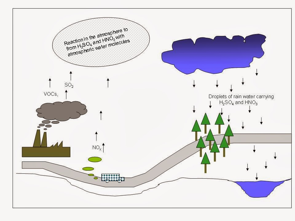 151 Air pollution by sulfur dioxide (SO2), acid rain Biology Notes