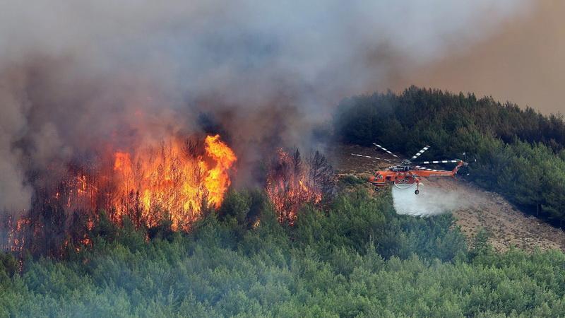 Επερώτηση Λαϊκής Συσπείρωσης ΑΜ-Θ για την καταστροφική πυρκαγιά στη Θάσο