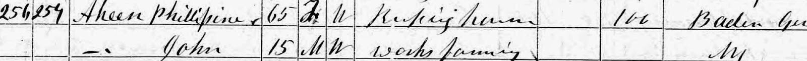 Climbing My Family Tree: 1870 Census: Phillipine & John Philip Henn