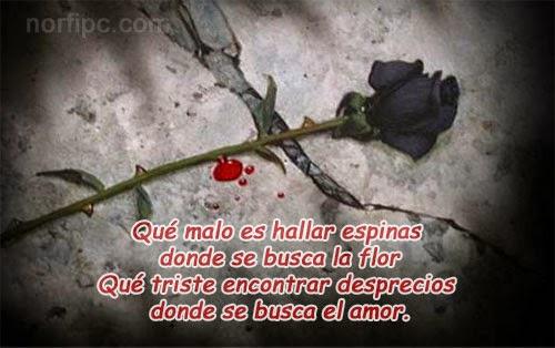 Poemas de desamor-tristes poemas de amor-frases de desilusion de amor-tristes frases de decepcion de amor gratis-frases de desilucion de amor a distancia .