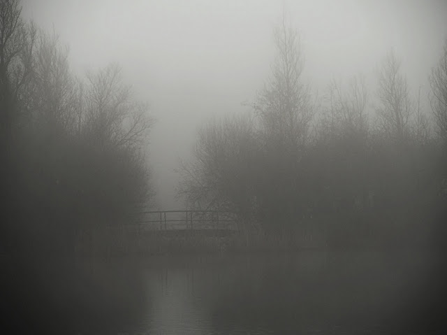 Bridge between thick bushes loom darkly in the mist