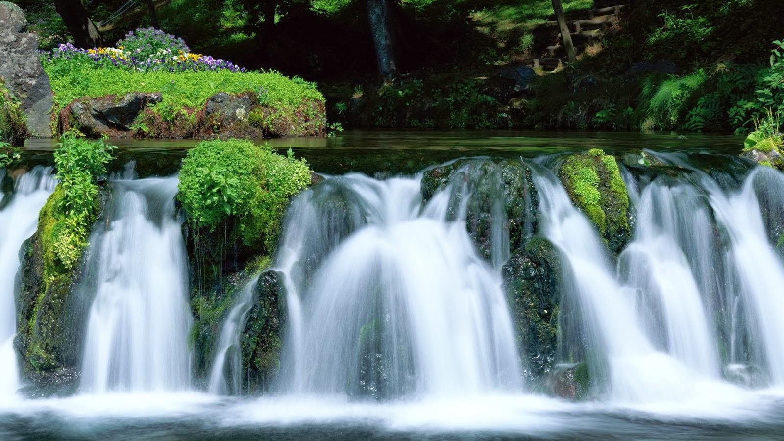 Wallpaper met watervallen en viooltjes