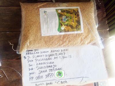 Benih Pesanan   ABDULLAH KARIM AR Sukoharjo, Jawa Tengah.  (Sebelum Packing)