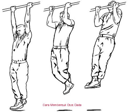 Cara Ampuh Membentuk Otot Dada Mudah Dan Cepat