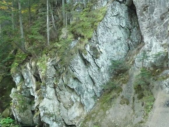 Національний природний парк «Сколівські Бескиди»