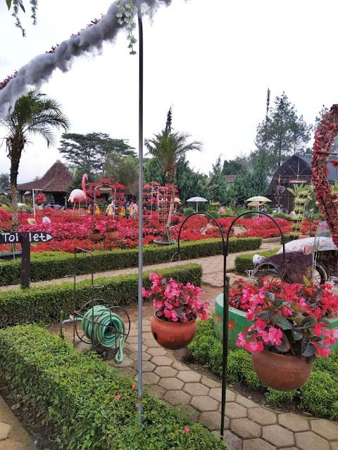 review kebun begonia lembang