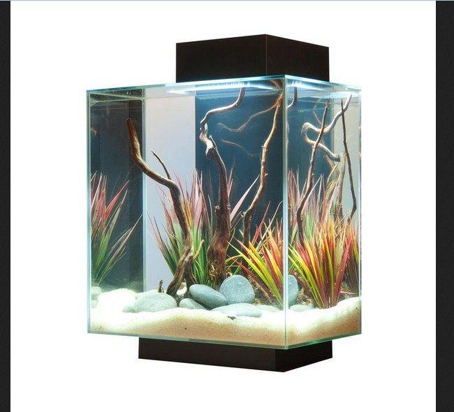Harga aquarium Ikan Hias