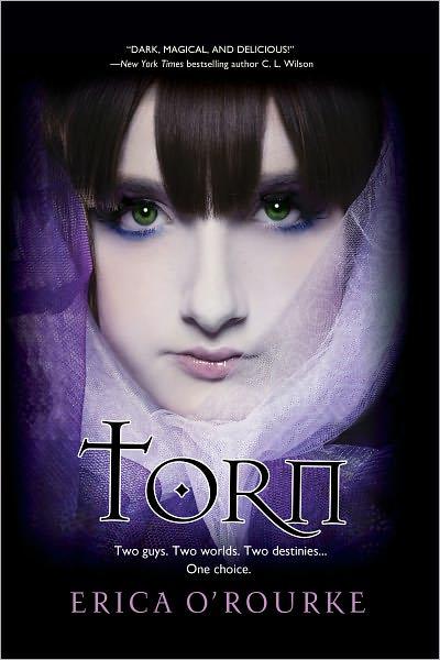 Torn – Erika O Rourke