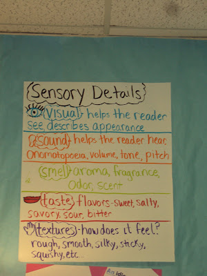 Sensory Solutions Aims and Objectives
