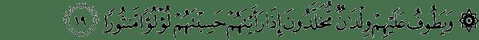 Surat Al-Insan Ayat 19