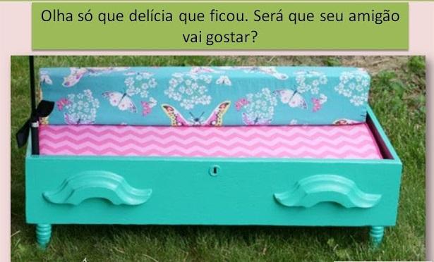 http://www.shihtzubrasill.com.br/