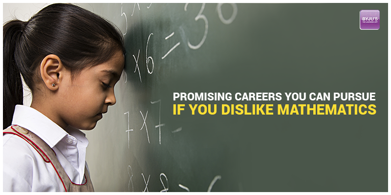 Promising Careers You Can Pursue If You Dislike Mathematics