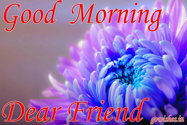 Good Morning Shayari & Wallpaper