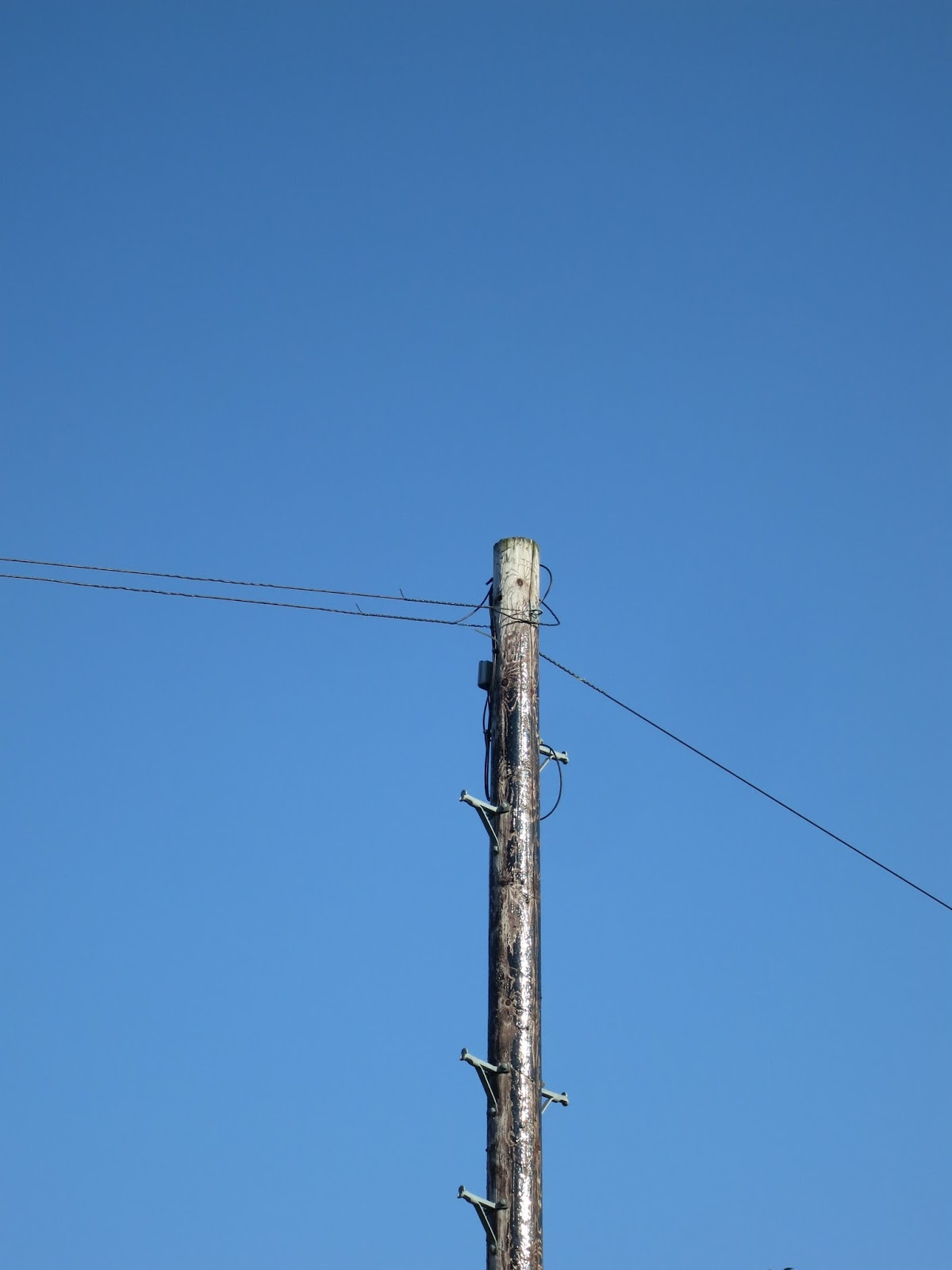 Glossy black, wooden telegraph pole with wires against blue sky