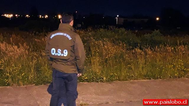 Carabineros investiga homicidio ocurrido en el sector Alerce Norte