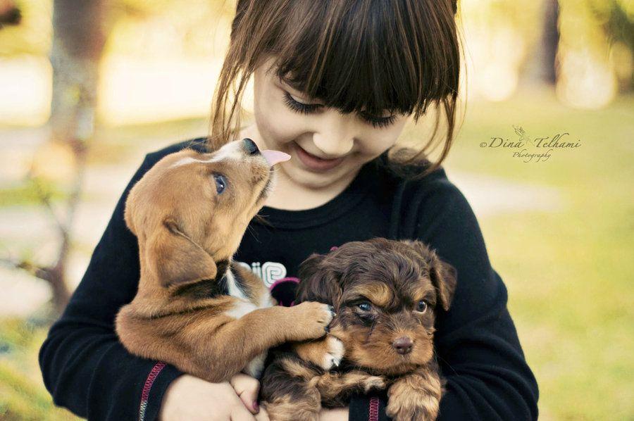 5. Puppy Love