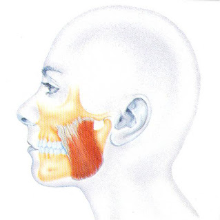Bruksizm - nakładka zgryzowa - szyna relaksacyjna