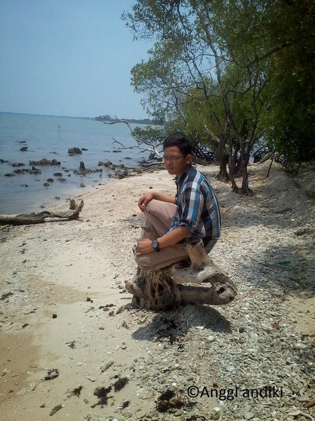 Wisata Cagar Alam Pulau Dua Serang Banten Daily Life Blog Internet Marketing