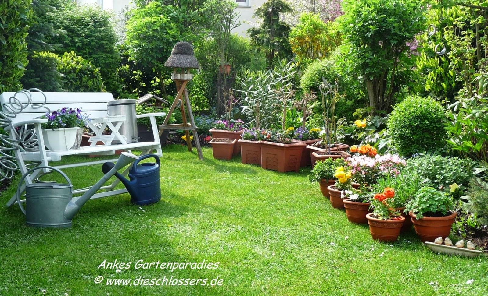 G A R T E N P A R A D I E S ***: Terrasse Und Kübelpflanzen