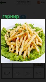 На тарелке украшенной зеленью приготовлен гарнир из картошки