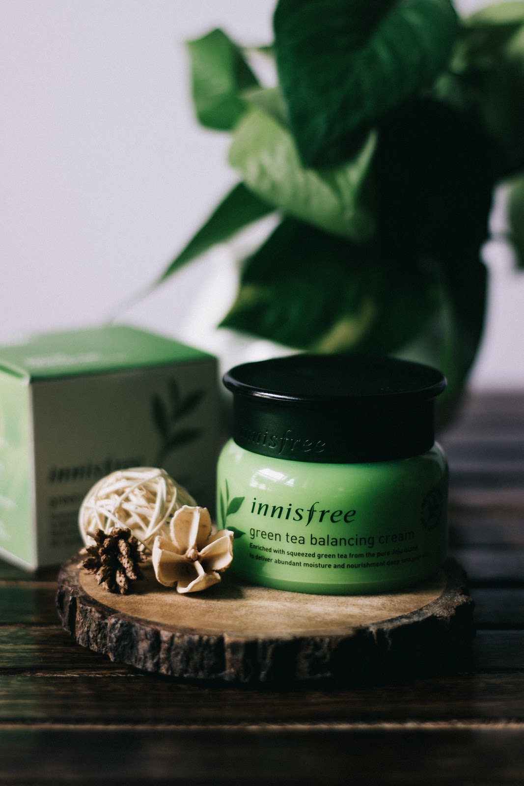 Innisfree-Green-tea-balancing-cream-combination-skin-review