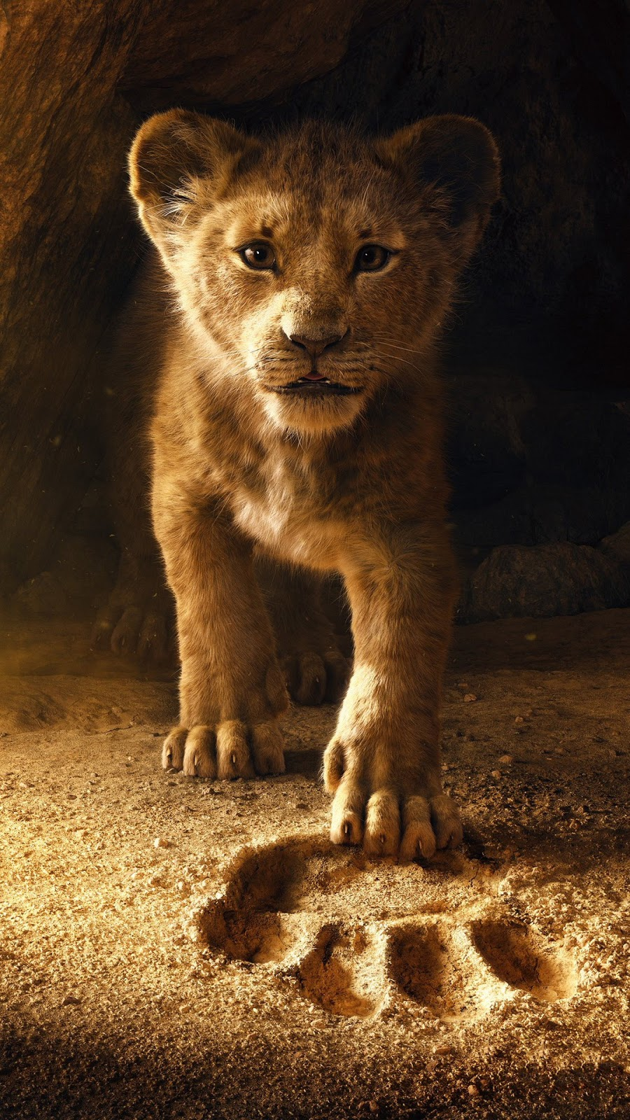 The Lion King 2019 wallpaper for mobile