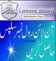 BISE Lahore Board Matric Roll Number Slip 2018