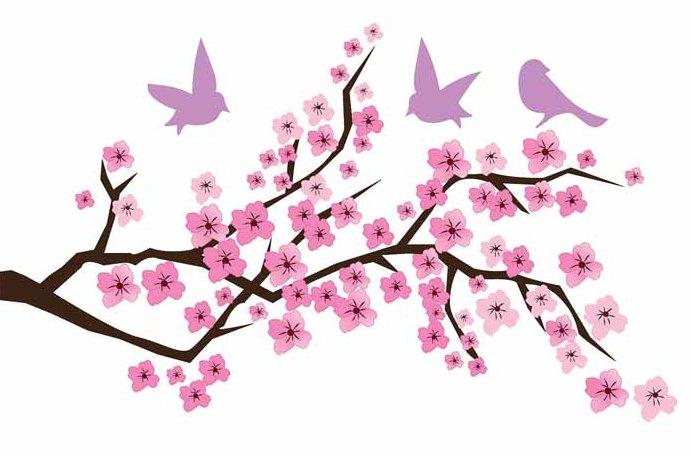 Mewarnai bunga sakura japan yang indah dan menawan