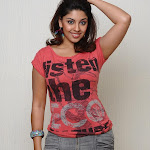 Richa Gangopadhyay Hot Photo Stills