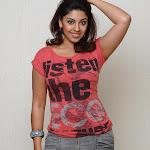 Richa Gangopadhyay Hot Photo Stills