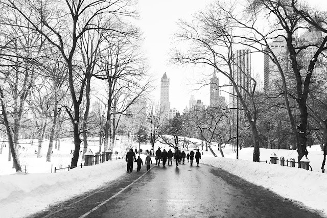 Snowy Central Park, New York - travel blog