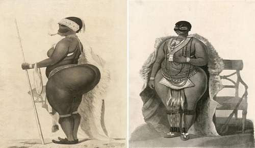 Sarah Baartman's Brain And Genitals