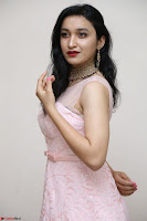 Sakshi Kakkar in beautiful light pink gown at Idem Deyyam music launch ~ Celebrities Exclusive Galleries 028.JPG