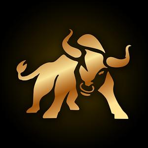 Bullbinary Logo