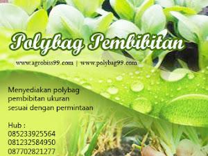 08123.258.4950 | Jual Polybag Murah Harga Murah Di Sidoarjo Jawa Timur