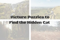 Picture Puzzles to Find the Hidden Cat