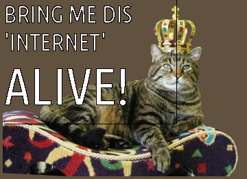 king cat that wants the internet, ALIVE
