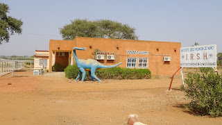 Niger had a Dinosour named Nigersaurus