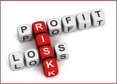 Risk and Profit in Forex Trading