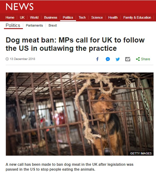Dog meat ban: MPs call for UK to follow the US in outlawing the practice