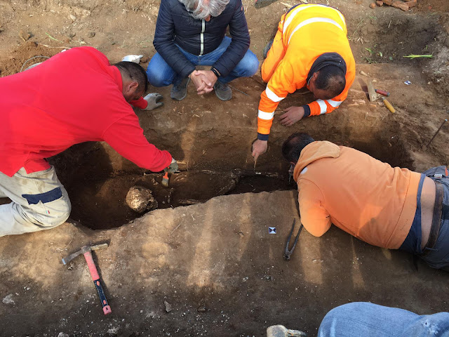 Roman burial from third century BC found in Baia Domizia, southern Italy