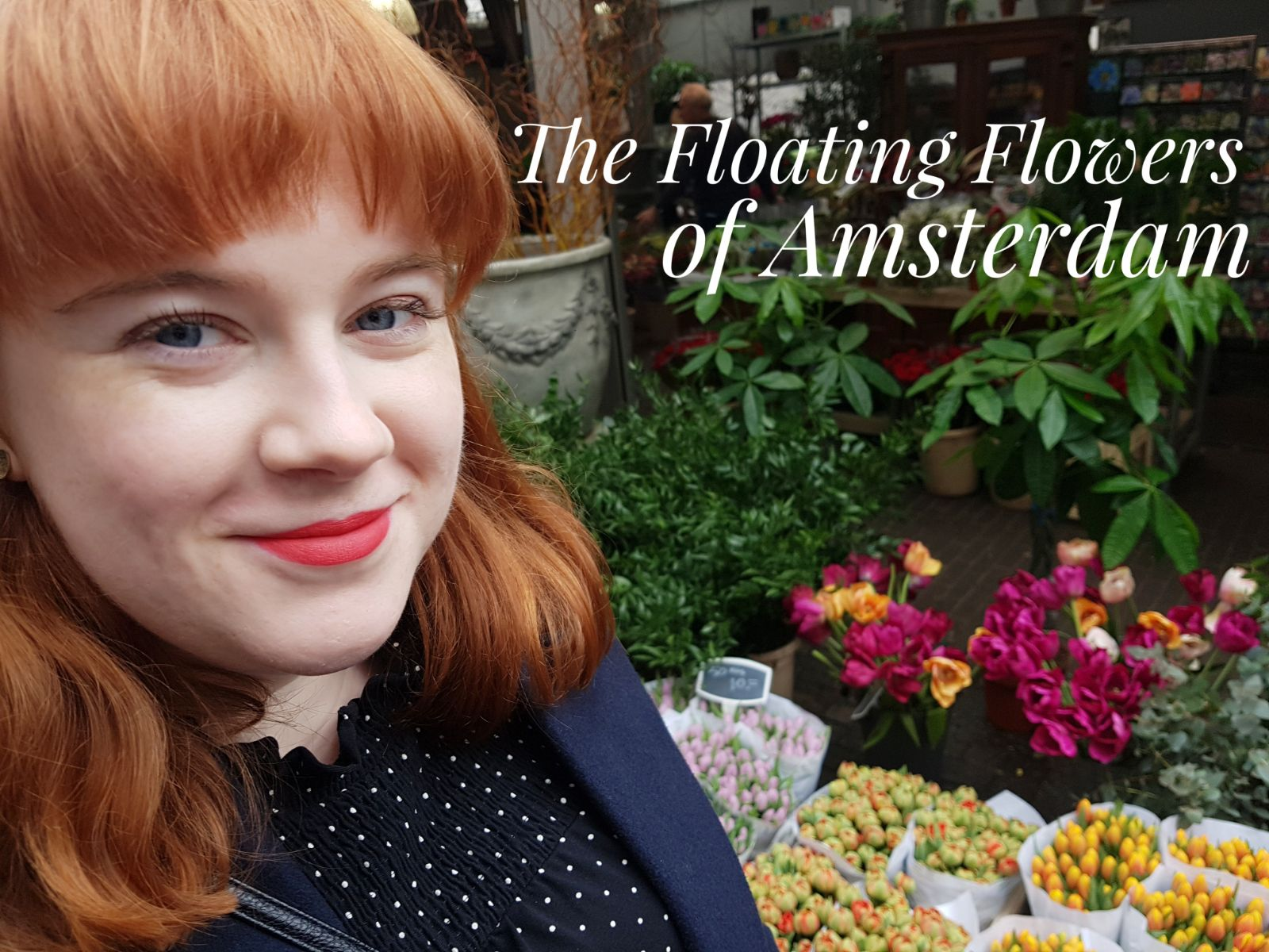 Talking all about the Bloemenmarkt of Amsterdam