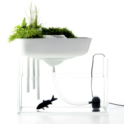 Floating Garden Aquarium