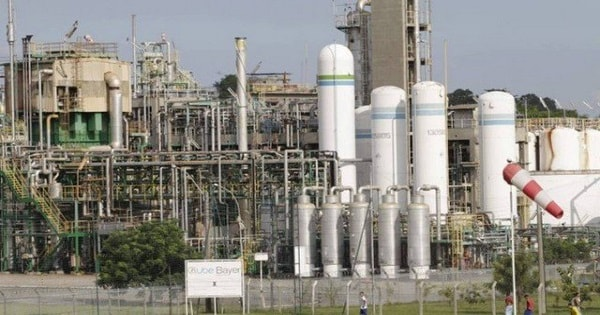 Bayer abre Processo Seletivo no Rio de Janeiro