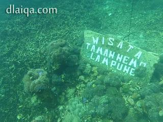 Wisata Taman Nemo, Lampung