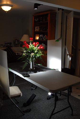 Roses setup shot
