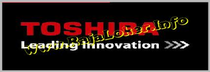 Toshiba Consumer Product