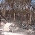 Incêndio atinge área de proteção ambiental em Luís Eduardo Magalhães tem alerta de queimadas